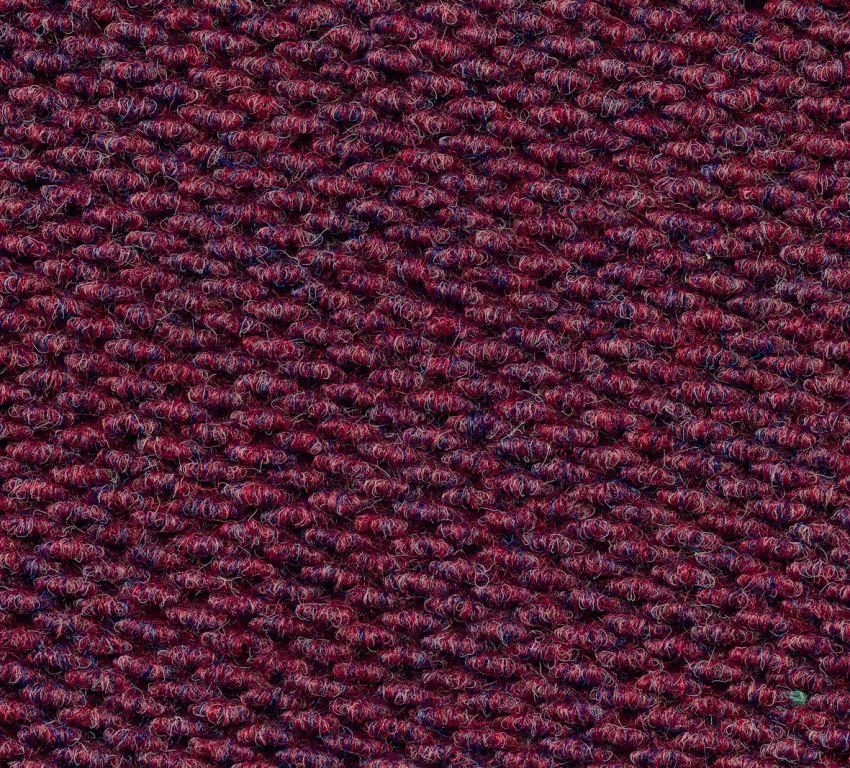 Rawson, Champion, Plum, Carpet Tile