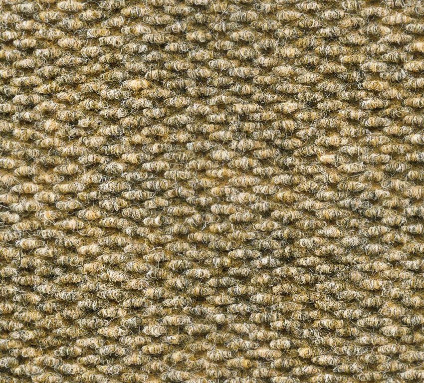 Rawson, Champion, Sand, Carpet Tile
