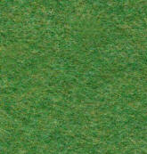 Rawson, Denby, Spring, Carpet Tile